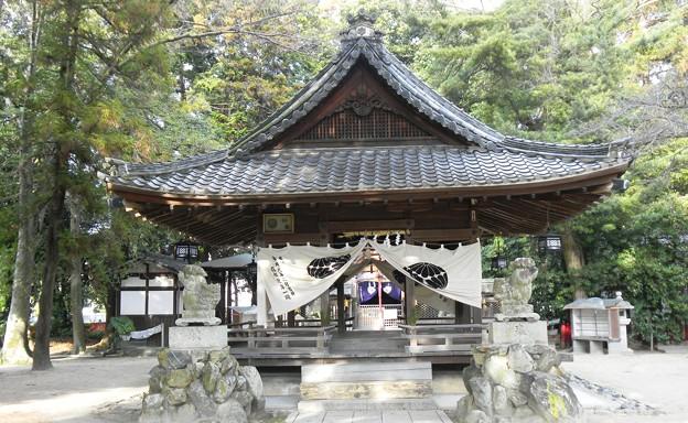 Photos: 御霊神社(北大路地区) (3)