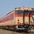 2013.02.03 JRK キハ66・67団体臨時列車