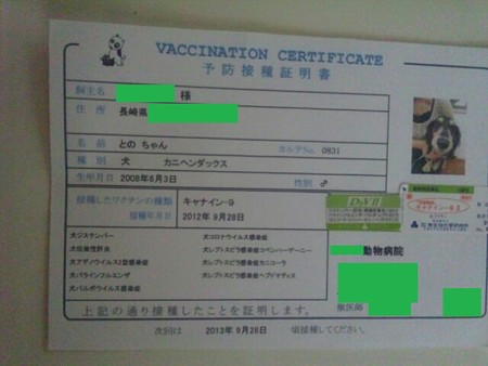 PhotoHenshu_20120928190447