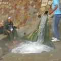 Photos: 温泉が出ているところ