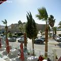 Photos: ハマメットのレストラン・BelleVue2階からの眺め