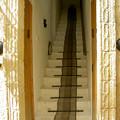 Photos: レストラン入口の階段