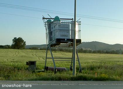 宣伝用巨大ショッピングカート