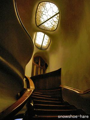 明かりは亀の甲羅