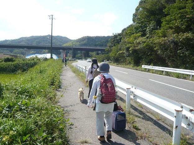 P1310132道の駅「筆柿の里・幸田」へ