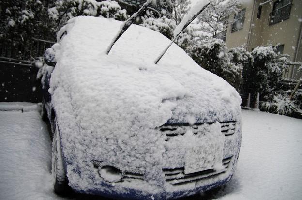 My Mercedes...