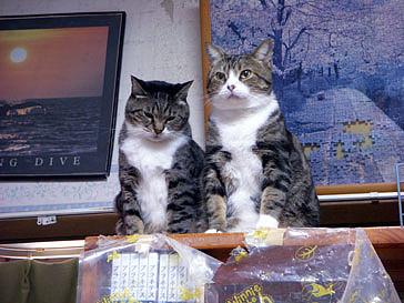 20121219 chibi&guwan3