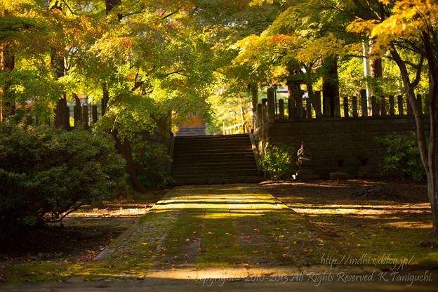 Photos: 昌禅寺