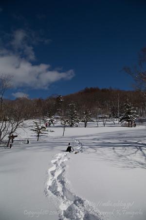 新雪踏みまくり