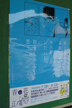 11_江ノ電青い花ポスター_湘南海岸公園