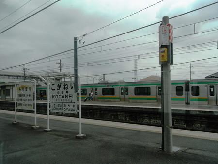 E231湘南新宿ライン車窓8
