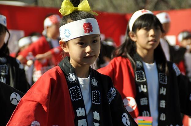 Photos: 2014-01-19 ニコン 二宮よさこい 菜の花富士山 613