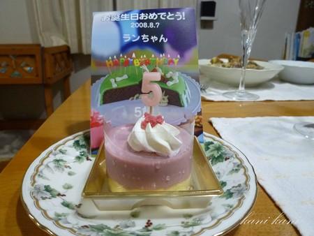ラン 5歳の誕生日