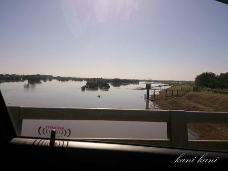 台風18号が過ぎ去った後の渡良瀬川