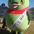 Photos: 095_かいちゃん