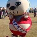 Photos: 100_いが☆グリオ