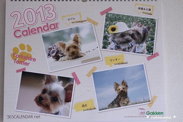 2013年 365カレンダー完成♪