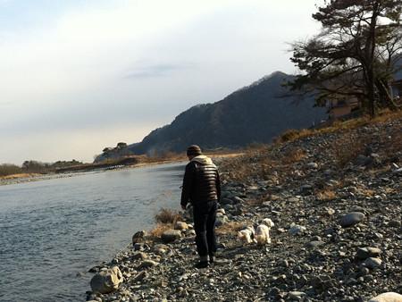 相模川の川辺で散歩 1