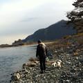 写真: 相模川の川辺で散歩 1