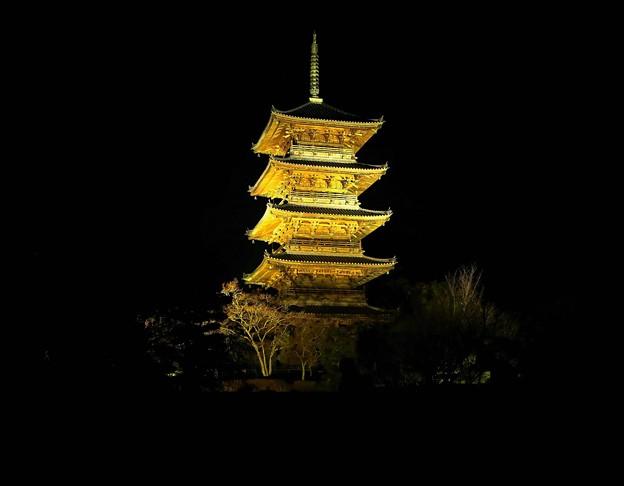 備中国分寺五重塔ライトアップ、岡山県総社市