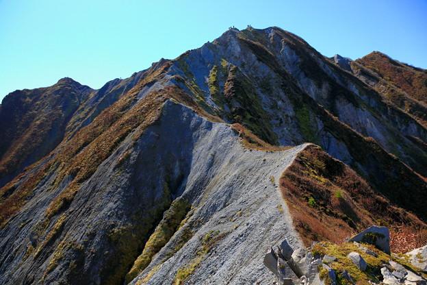 大山振子沢の頭(1636m)へ到着、頂上を見上げる。。