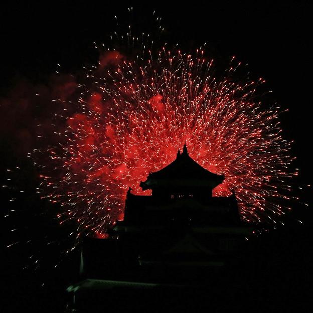 2013 Summer Siege of Okayama、Korakuen