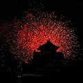 Photos: 2013 Summer Siege of Okayama、Korakuen