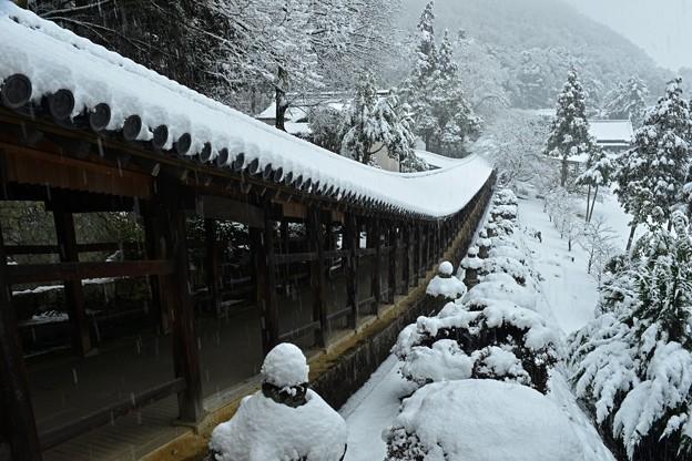 晴れの国 銀景色、岡山市の吉備津神社で ☆