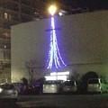 写真: カトリック松戸教会の控えめなイルミネーション