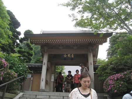 鎌倉 成就院01 山門