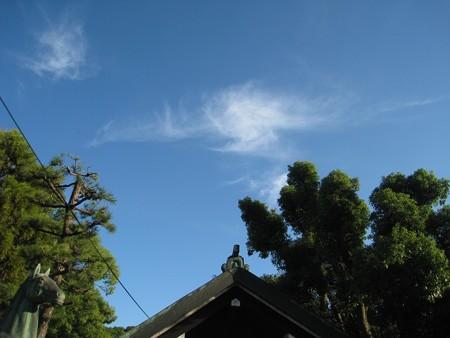 鳳凰が舞う大鳥大社の蒼空