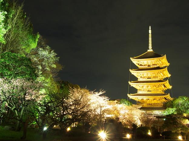 写真: 東寺の五重塔