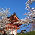 写真: 京都 清水寺