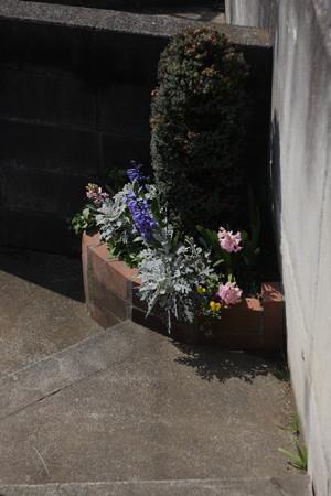 階段の踊り場花壇