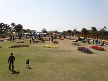 チューリップ祭り 公園内 (3)