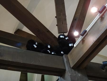 天井にまっくろくろすけ