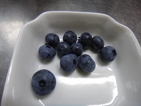 13 ブルーベリー収穫