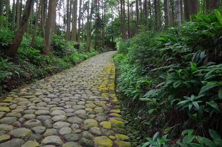 東海道石畳坂 (2)