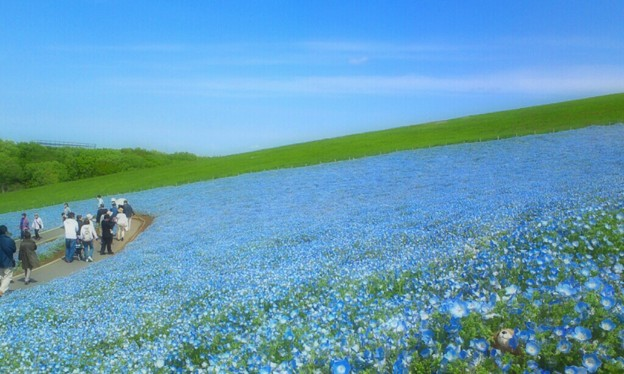 ♪ 青い空、青い海??