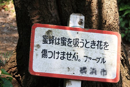 2012.07.26 追分市民の森 ファーブルの看板