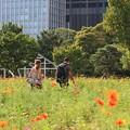 Photos: 2012.08.28 浜離宮 カップル