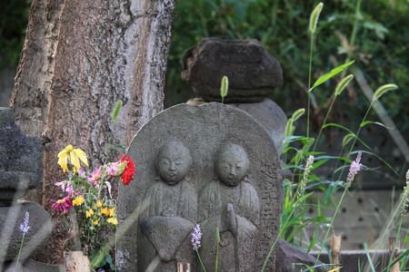 2012.09.29 和泉川 道端