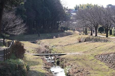 20136.01.10 和泉川
