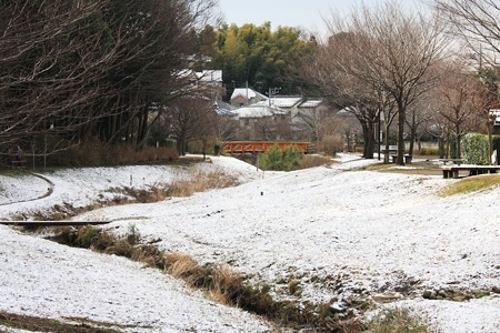2013.02.20 和泉川 雪の翌朝