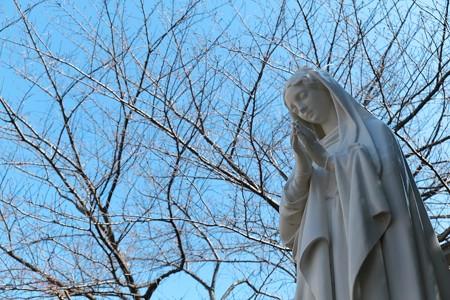2013.03.06 カトリック山手教会 マリア像