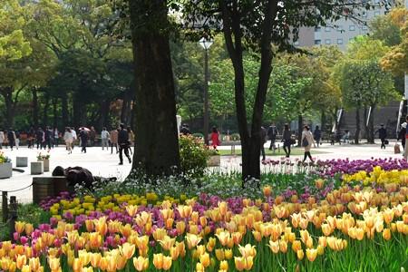 2013.04.09 横浜公園 チューリップ 通勤と春眠