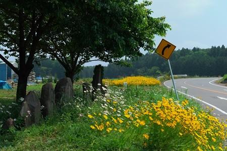 2013.06.05 栃木 茂木 母の道