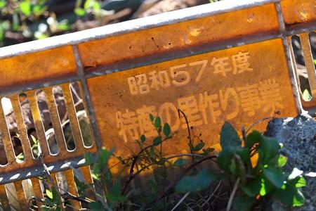 2013.11.29 追分市民の森 畑の脇 手を変え品を変え箱