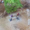 Photos: 2014.03.24 ズーラシア アフリカのジオラマ