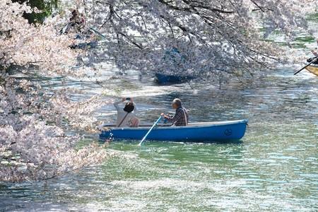 2014.04.04 千鳥ケ淵 桜撮り
